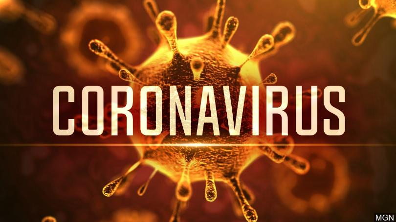Feature Image - The Coronavirus: Why Research is Important